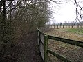 Icknield Way Path - geograph.org.uk - 1692060.jpg