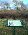 Information board at the Osiers Nature Area - geograph.org.uk - 1045516.jpg