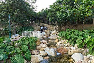 Inspiration Lake - Arboretum waterfall