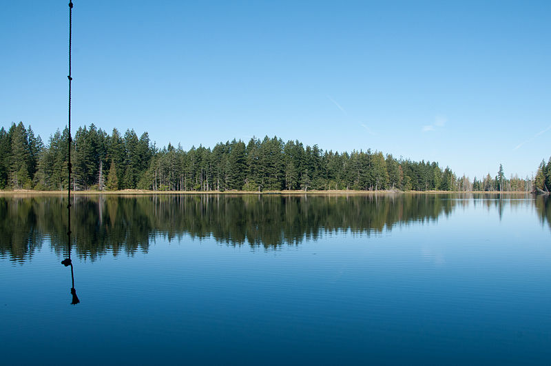 File:Inviting rope swing at placid Chickadee Lake.jpg
