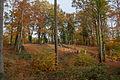 Jüdischer Friedhof in Boizenburg.jpg
