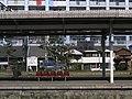 JR Kagoshima Sta. - panoramio.jpg