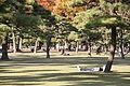 Japan - Tokyo (9979294933).jpg