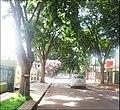 Jardim Independencia - panoramio (1).jpg