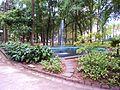 Jardim das Preguiças.jpg
