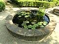 Jardin Serre de la Madone - DSC04151.JPG