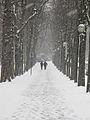 Jardin du Ranelagh - neige 7.jpg