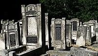 Jewish cemetery Lodz IMGP6373.jpg