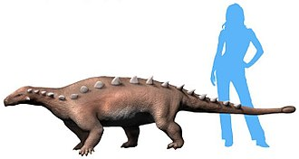 Timeline of ankylosaur research - Life restoration of Jinyunpelta sinensis