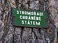 Jirny, stromořadí chráněné státem.jpg