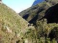 Jonkershoek Mountains - panoramio (1).jpg