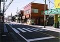 Junction of Iruma and Chubu horse tram.jpg