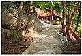 KHO TAO - panoramio (3).jpg