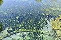 Kaklık Cave's Pool - panoramio.jpg