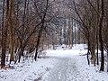 Kalvehaven (vinter).jpg