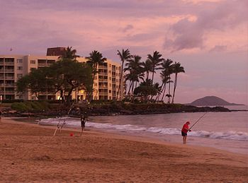 What to do in kihei