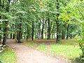Karlova mõisa park 1.JPG
