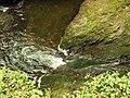 Kavinský potok (12).jpg