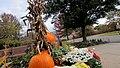 Kendall Park, South Brunswick Township, NJ, USA - panoramio (3).jpg