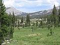 Kerrick Meadow - panoramio - Kurt Minard (3).jpg