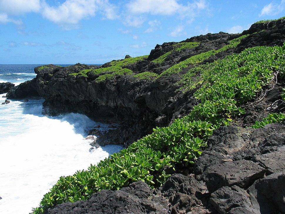 Kipahulu coast