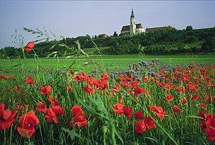 Pfarrkirche Hausleiten am Wagram (Geländestufe)