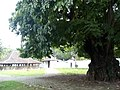 Komplek Keraton Kanoman (4).jpg