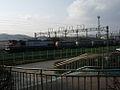 Korail 7100-7500 Series Diesel-Electric Locomotive - Flickr - skinnylawyer.jpg