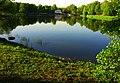 Kuz'minky. Moscow, Russia. - panoramio - Oleg Yu.Novikov (24).jpg