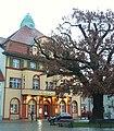 Kyritz Marktplatz Quercus.JPG