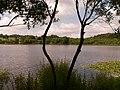 Lagoa de Sobrado dos Monxes - panoramio.jpg