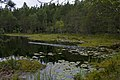 Lake Hältingträsk in Sipoonkorpi, Helsinki, 2009.jpg
