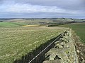 Lammermuir Farmland - geograph.org.uk - 360530.jpg