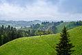 Landscape at Hergiswil near Willisau - Lucerne - Switzerland - 04.jpg