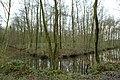 Landschap De Stroopers te Kemzeke - 371930 - onroerenderfgoed.jpg