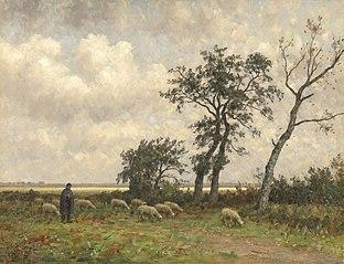 Landscape in Drenthe