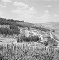 Landschap met bergen en bomen, Bestanddeelnr 255-2600.jpg