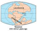 Laurasia-Gondwana.png