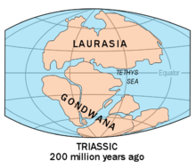 hvilken verdensdel består primært af en ø