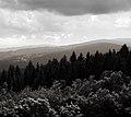 Layers - Flickr - tmoravec.jpg