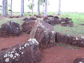 Leis on the Kukaniloko Birthing stones.jpg