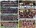 Leones de San Marcos Rugby Perú - Divisiones 2011-2015.jpg
