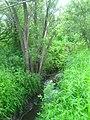 Lesnaya River, Basandaika tributary IMG 1032.jpg