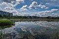Liebiadziny reserve (Belarus) 33 — recent development.jpg