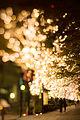 Light decoration in Marunouchi, Tokyo (11153842966).jpg