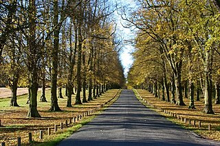 Clumber Park estate in Worksop, Nottinghamshire, England