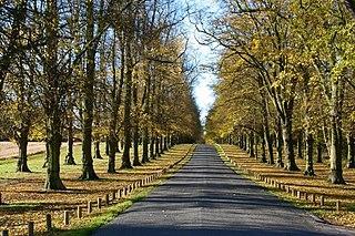 Clumber Park Estate in Worksop, Nottinghamshire, England