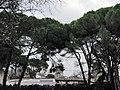 Lisboa (28121742739).jpg