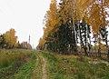 Lobnya, Moscow Oblast, Russia - panoramio (471).jpg