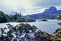 Loch Druim Suardalain - geograph.org.uk - 1635539.jpg